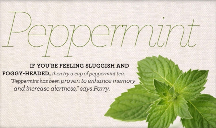 peppermint smell